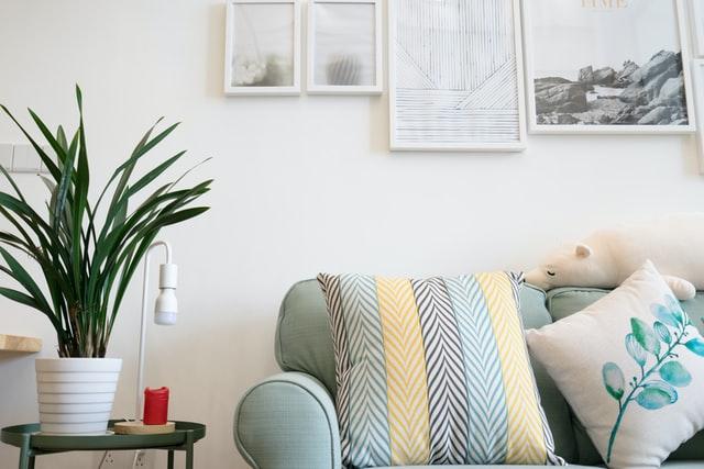 Siempre agrega verde a tus espacios, hacen resaltar tu mobiliario.